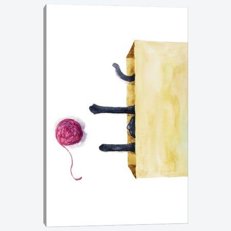 Black Cat In The Box Canvas Print #AXS11} by Alexey Dmitrievich Shmyrov Art Print