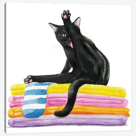Black Cat On Bath Towels Canvas Print #AXS12} by Alexey Dmitrievich Shmyrov Canvas Art Print