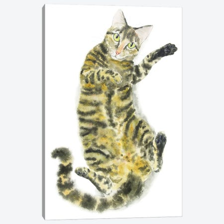 Cute Tabby Cat Canvas Print #AXS24} by Alexey Dmitrievich Shmyrov Art Print