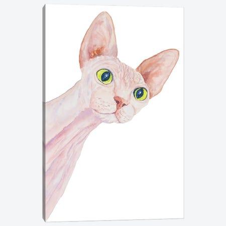 Funny Sphinx Cat Canvas Print #AXS30} by Alexey Dmitrievich Shmyrov Canvas Art Print