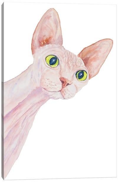 Funny Sphinx Cat Canvas Art Print