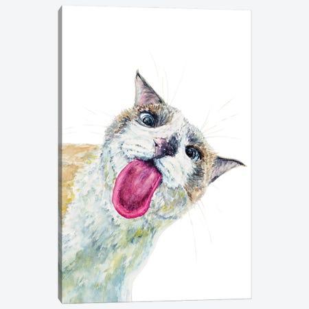 Funny Peeking Cat Canvas Print #AXS36} by Alexey Dmitrievich Shmyrov Canvas Artwork
