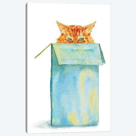 Orange Tricky Cat In The Box Canvas Print #AXS49} by Alexey Dmitrievich Shmyrov Canvas Wall Art