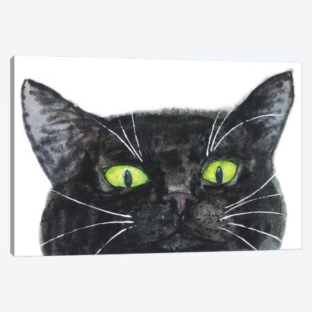 Peeking Black Cat Canvas Print #AXS50} by Alexey Dmitrievich Shmyrov Art Print