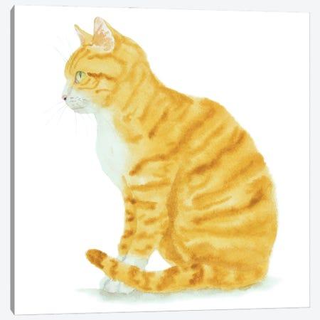 Sitting Orange Cat Canvas Print #AXS53} by Alexey Dmitrievich Shmyrov Canvas Art Print