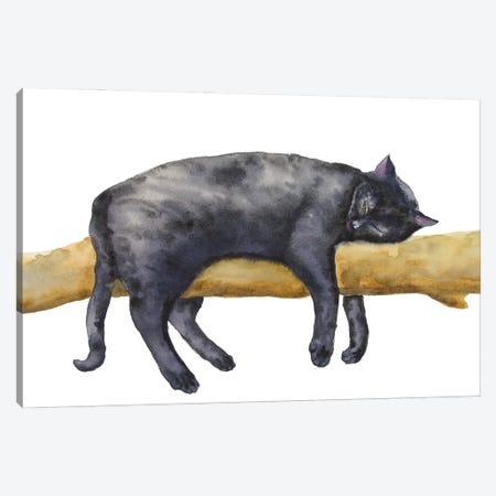 Sleeping Black Cat Canvas Print #AXS55} by Alexey Dmitrievich Shmyrov Canvas Wall Art