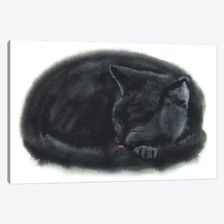 Sleeping Black Kitten Canvas Print #AXS56} by Alexey Dmitrievich Shmyrov Canvas Artwork
