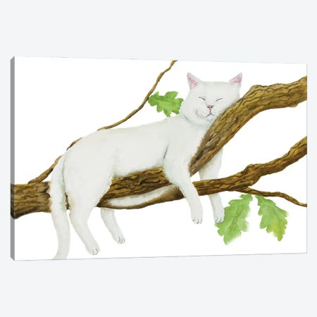 Sleeping White Cat Canvas Print #AXS62} by Alexey Dmitrievich Shmyrov Canvas Wall Art