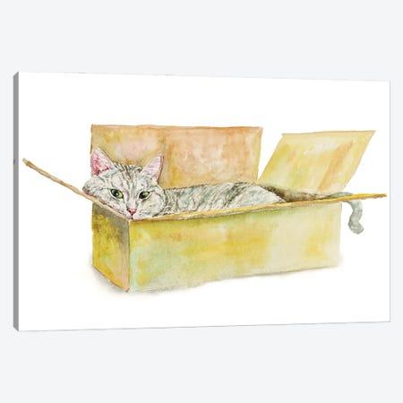 Tabby Cat In The Box Canvas Print #AXS74} by Alexey Dmitrievich Shmyrov Canvas Art