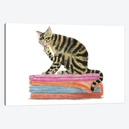 Tabby Cat On Bath Towels Canvas Print #AXS75} by Alexey Dmitrievich Shmyrov Canvas Artwork
