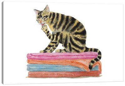 Tabby Cat On Bath Towels Canvas Art Print