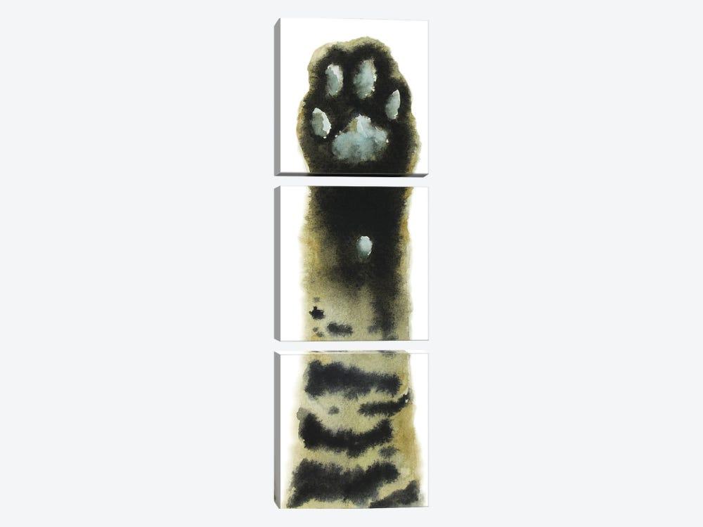 Tabby Cat Paw by Alexey Dmitrievich Shmyrov 3-piece Canvas Print