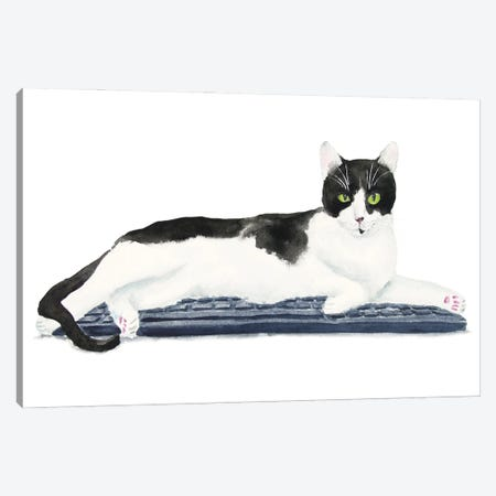 Tuxedo Cat On The Keyboard Canvas Print #AXS82} by Alexey Dmitrievich Shmyrov Canvas Artwork
