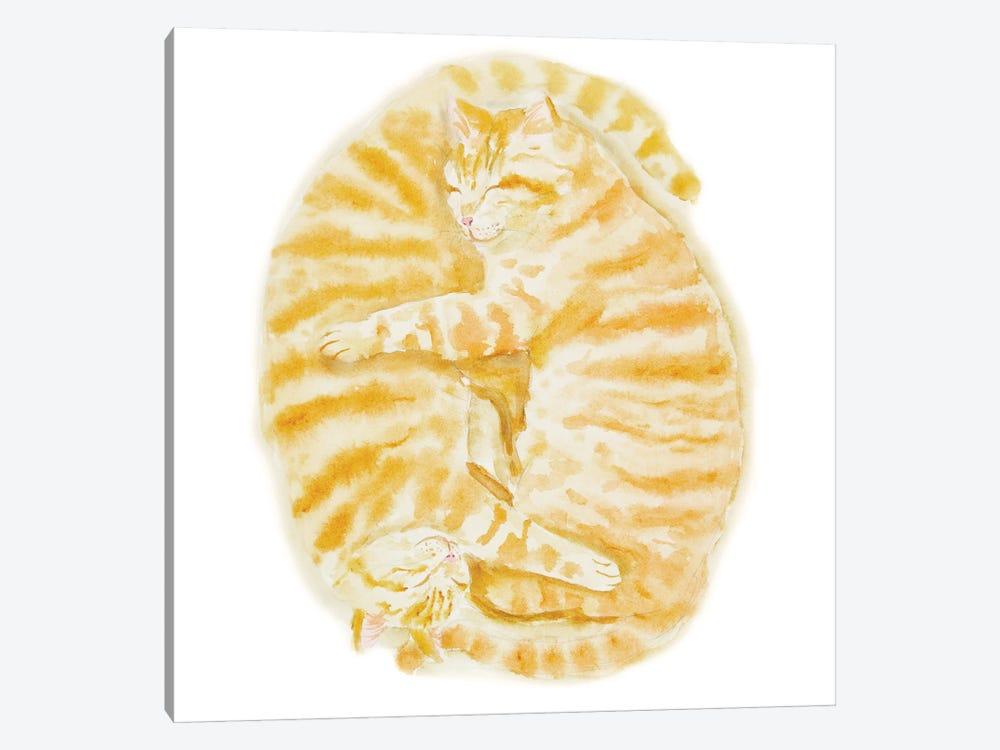 Two Sleeping Orange Tabby Cats by Alexey Dmitrievich Shmyrov 1-piece Canvas Print