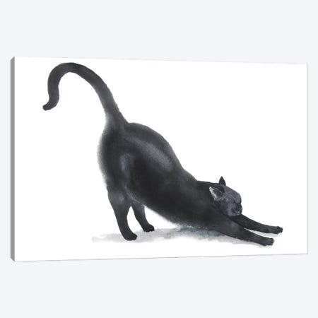 Yoga Black Cat II Canvas Print #AXS90} by Alexey Dmitrievich Shmyrov Canvas Print