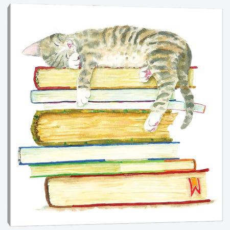 Sleeping Tabby Kitten Canvas Print #AXS91} by Alexey Dmitrievich Shmyrov Canvas Art Print