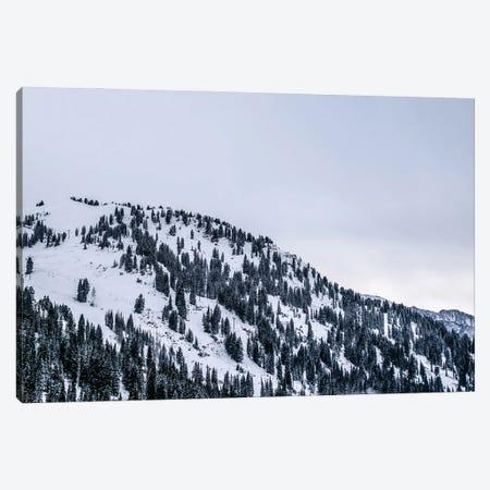 Monochrome Winter Canvas Print #AXT108} by Alex Tonetti Canvas Art