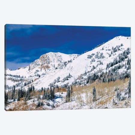 Mountainscape Canvas Print #AXT110} by Alex Tonetti Canvas Print