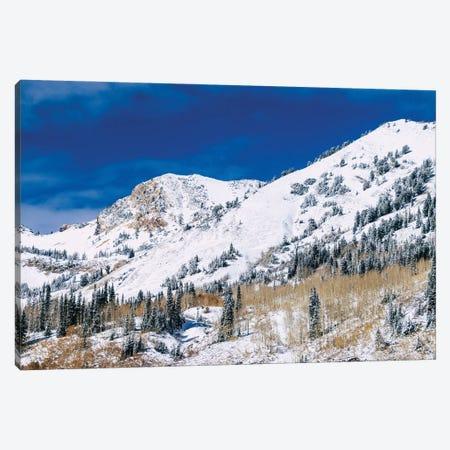Mountainscape Canvas Print #AXT110} by Alex Tonetti Canvas Print