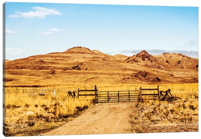 Out On The Ranch Canvas Art Print