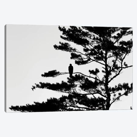 Silhouette Canvas Print #AXT145} by Alex Tonetti Canvas Art Print