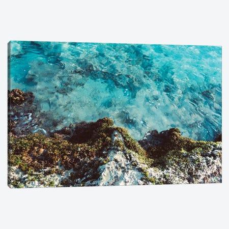 Blue Coast Canvas Print #AXT15} by Alex Tonetti Art Print