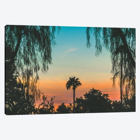Tropical State Of Mind Canvas Print #AXT174} by Alex Tonetti Canvas Artwork