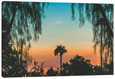 Tropical State Of Mind Canvas Art Print