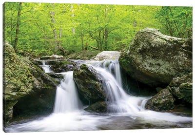 Boulder Stream Canvas Art Print