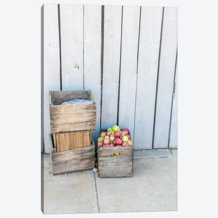 An Apple A Day Canvas Print #AXT215} by Alex Tonetti Art Print