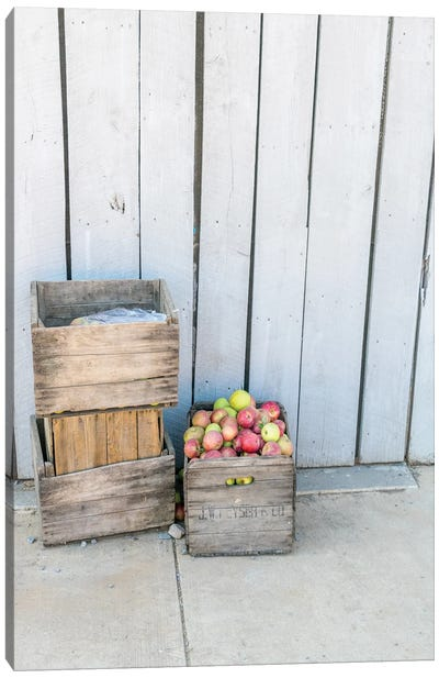 An Apple A Day Canvas Art Print
