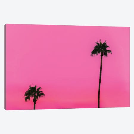Feeling Tropical Canvas Print #AXT261} by Alex Tonetti Art Print