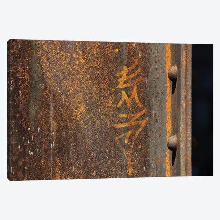 Raw Steel Canvas Print #AXT339} by Alex Tonetti Canvas Print