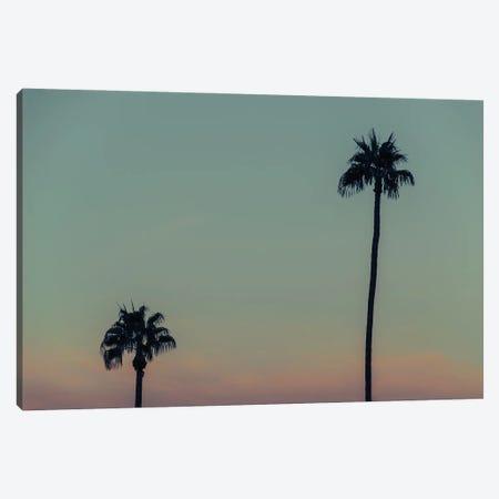 Under The Palms Canvas Print #AXT374} by Alex Tonetti Canvas Artwork