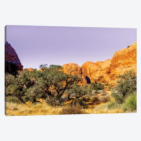 Desert Dreams Canvas Print #AXT49} by Alex Tonetti Canvas Print