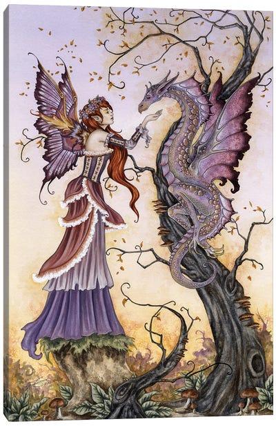 The Dragon Charmer Canvas Art Print