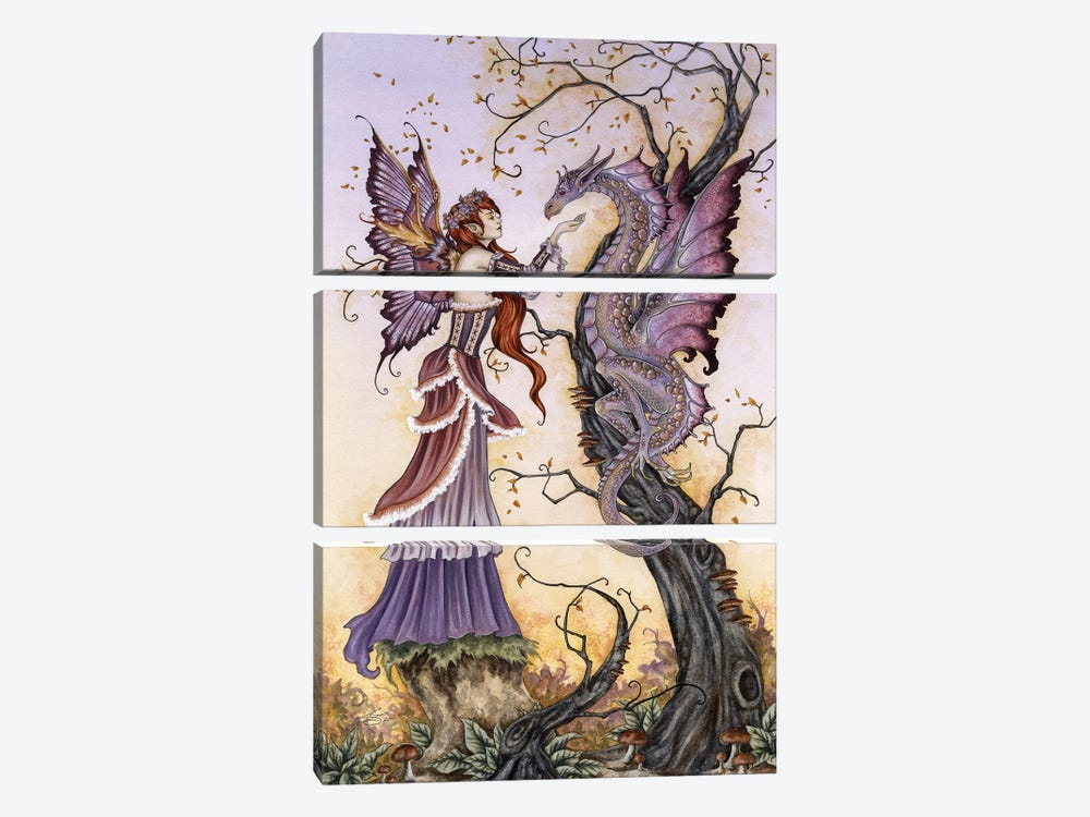 The Dragon Charmer by Amy Brown 3-piece Canvas Artwork