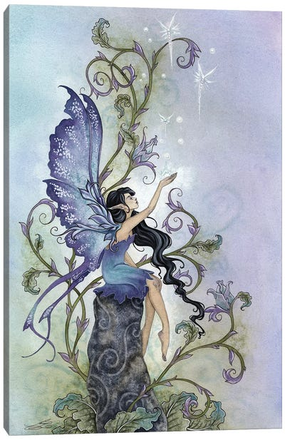 Creation Canvas Art Print
