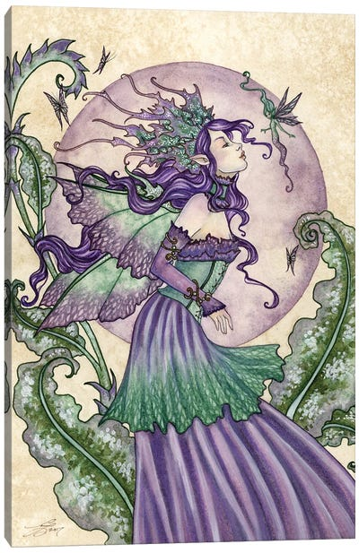 Pixie Gossip Canvas Art Print