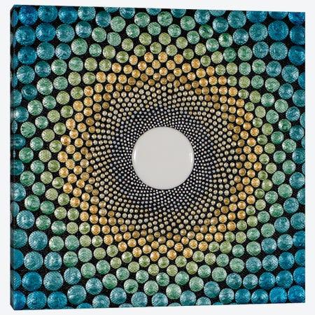 Rays Canvas Print #AYD12} by Amy Diener Art Print