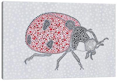 Ladybug Love Canvas Art Print