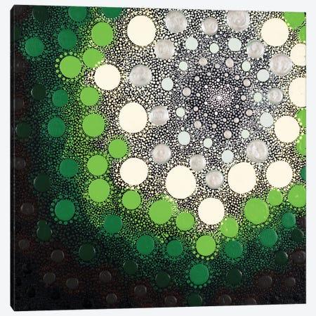 Earthtone I Canvas Print #AYD49} by Amy Diener Canvas Art