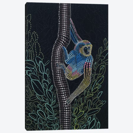 Thailand Gibbon Canvas Print #AYD8} by Amy Diener Canvas Print