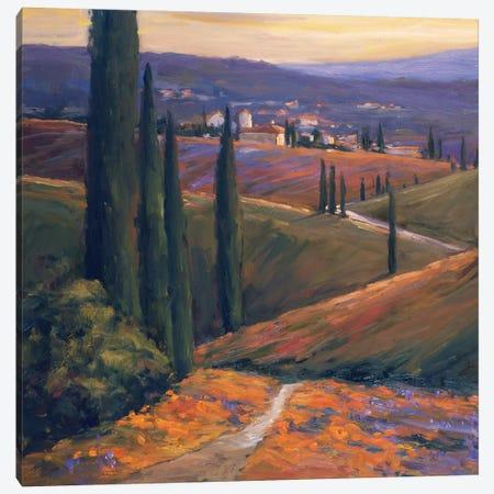 Afternoon I 3-Piece Canvas #AYN1} by Allayn Stevens Canvas Print