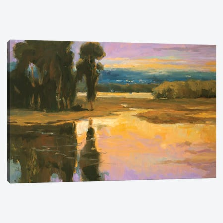 Peaceful I Canvas Print #AYN22} by Allayn Stevens Canvas Art