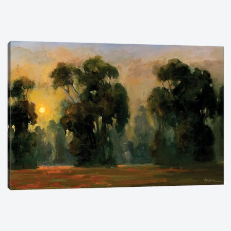 Sun Glint Canvas Print #AYN35} by Allayn Stevens Canvas Artwork