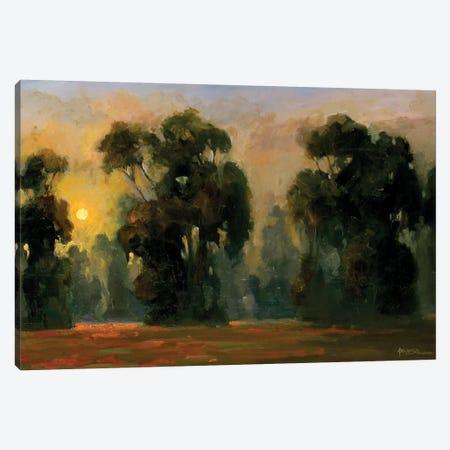 Sun Glint Canvas Print #AYN35} by Allayn Stevens Canvas Artwork