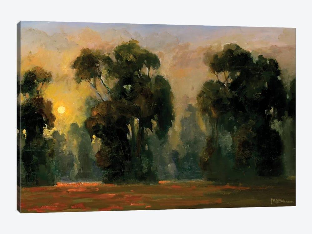 Sun Glint by Allayn Stevens 1-piece Canvas Wall Art
