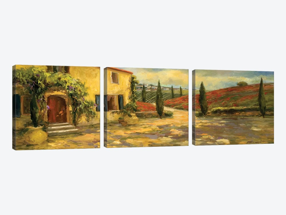 Tuscan Fields by Allayn Stevens 3-piece Canvas Art Print