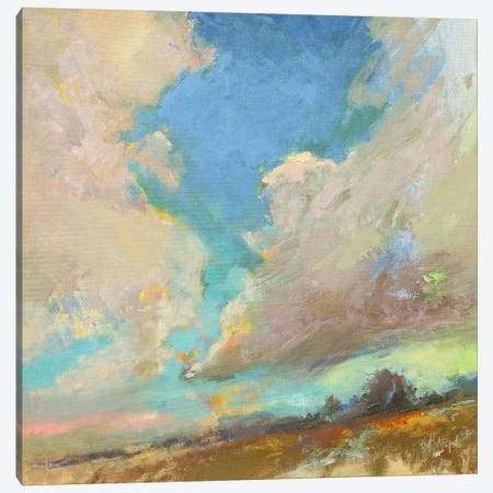 Clouds Got In My Way Canvas Print #BAF1} by Beth A. Forst Art Print